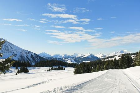 soleil: ski tracks in snow forest on mountain in Portes du Soleil region, Morzine - Avoriaz, France Stock Photo