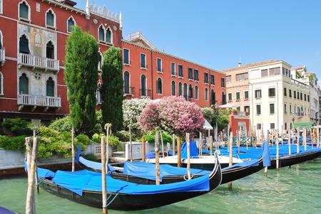 parking of gondolas near Ponte di Rialto in Venice, Italy photo