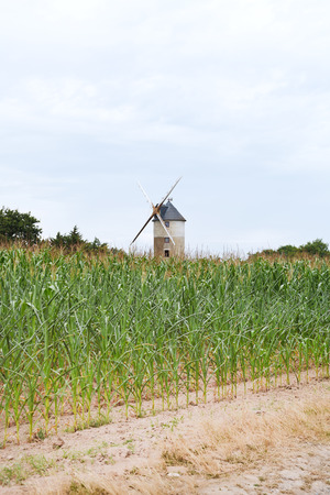 parc naturel: country landscape with windmill in Briere region, France