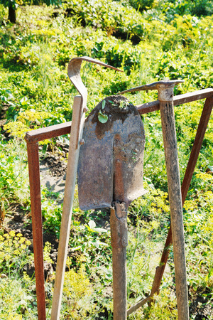 agrarian: old agricultural tools in garden in summer day