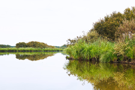 parc naturel: view of Briere Marsh in summer day in Briere Regional Natural Park, France