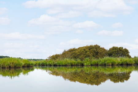 parc naturel: landscape of Briere Marsh in summer day in Briere Regional Natural Park, France