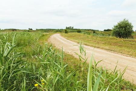 agrarian: country road between agrarian fields in caucasus region