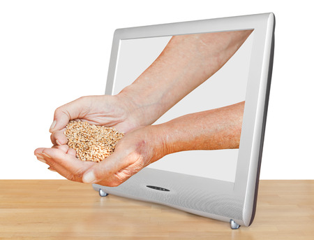farmer hands holding handful of grains leads out TV screen isolated on white background photo