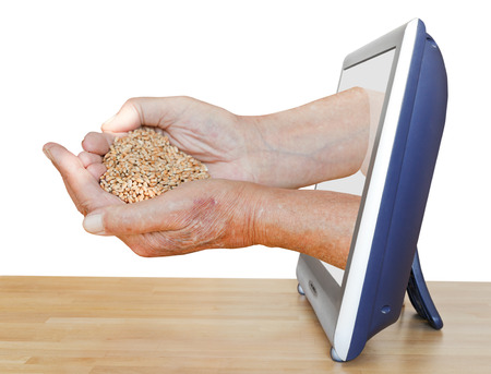 peasant hands holding handful of grains leads out TV screen isolated on white background photo