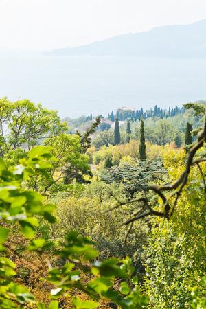 view of Black Sea coast from Nikitsky Botanical Garden, Southern Coast of Crimea photo