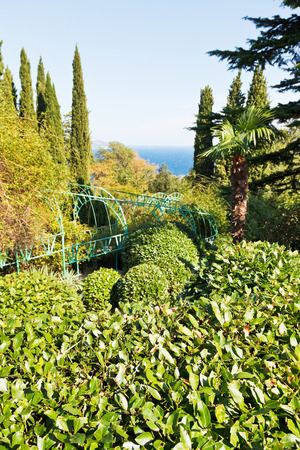 view of Livadia garden on South Coast of Crimea and Black Sea photo