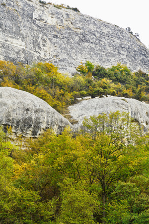 herd of goats walking along a mountain path in mariam-dere gorge, Crimea photo