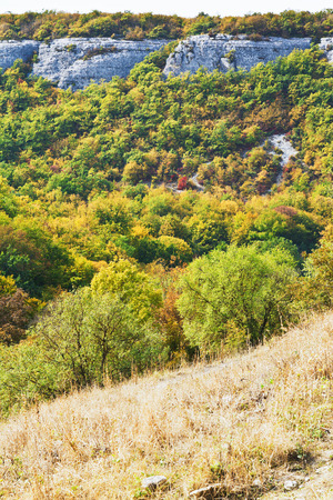 view of gorge mariam-dere in Crimean mountains in autumn photo
