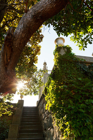 alupka: steps from garden in Vorontsov (Alupka) Palace in Crimea