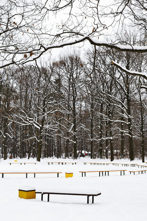 snow covered recreation ground in city park in winter photo