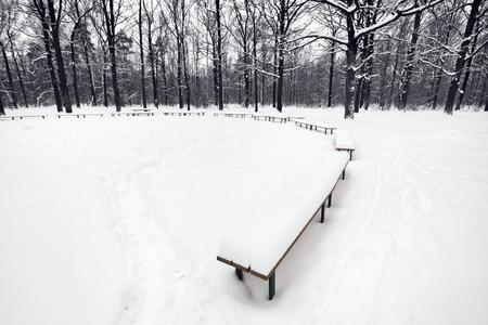 snowbound: snowbound public area with benches in city park in winter