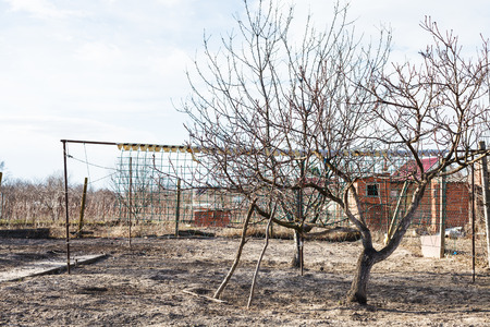 krasnodar region: empty village backyard garden in early spring day