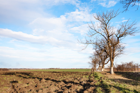 krasnodar region: country landscape with plowed fields in early spring day