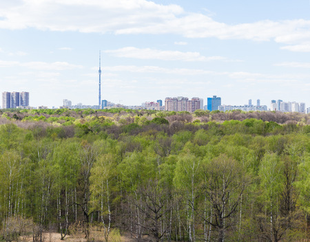 garden settlement: view of city and green forest in spring day