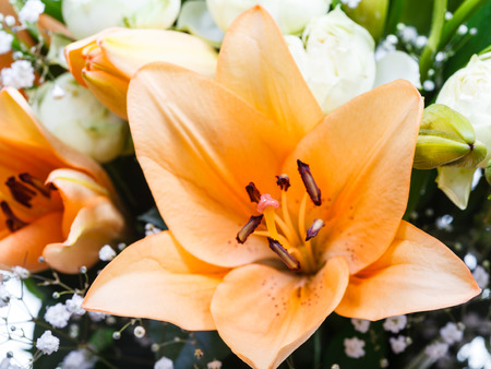 tiger lily: tiger lily close up in a bouquet of flowers Stock Photo