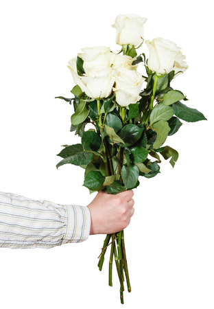 arm bouquet: male hand giving bouquet of many white roses isolated on white background