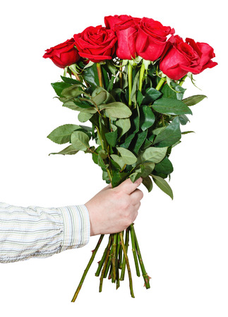 arm bouquet: male hand giving bouquet of many red roses isolated on white background