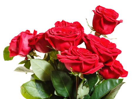 nosegay: side view of bouquet of red roses isolated on white background Stock Photo
