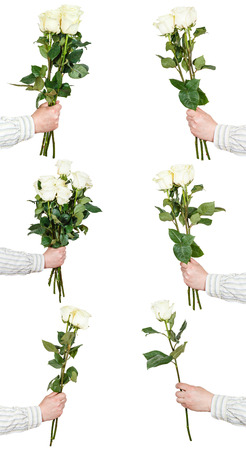 bunches: set of white rose bunches of flowers isolated on white background Stock Photo