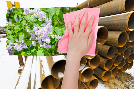 deletes: ecology concept - hand deletes industrial landscape by pink cloth from image and spring lilac blossoms are appearing