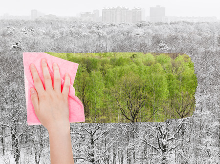 deletes: season concept - hand deletes winter forest by pink cloth from image and green summer foliage are appearing