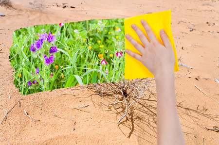 deletes: season concept - hand deletes sand in desert by yellow cloth from image and summer meadow is appearing