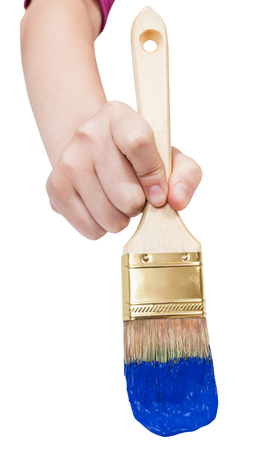 housepainter: direct view of painter hand with flat paintbrush painting in blue paint isolated on white background