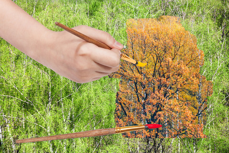 arise: nature concept - seasons and weather changing: hand with paintbrush paints yellow autumn oak in green summer woods