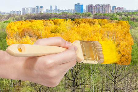 arise: nature concept - seasons and weather changing: hand with paintbrush paints yellow autumn foliage on green summer trees Stock Photo