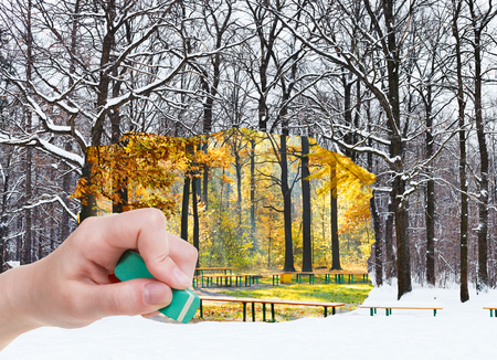 changing seasons: nature concept - seasons and weather changing: hand with eraser erases autumn day and winter forest is appearing Stock Photo