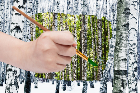 arise: nature concept - seasons and weather changing: hand with paintbrush paints green leaves on birches instead of white winter trees Stock Photo