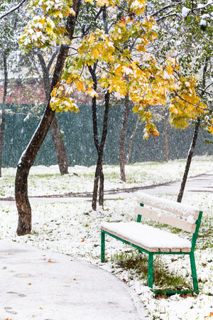 sideway: empty bench in urban park under first snowfall in autumn