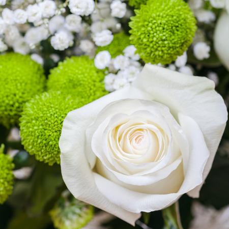 frisse witte roos bloei in boeket close-up Stockfoto