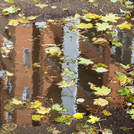 urban home is reflected in rain puddle with floating fallen leaves in autumn day Stock Photo