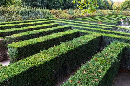schloss schonbrunn: green maze of Schloss Schonbrunn palace garden, Vienna. The Maze at Schonbrunn was laid out between 1698 and 1740 and consisted of four different parts