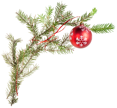 detail of xmas frame - twig of fir tree with cone and red ball on white background