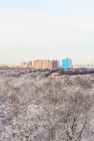 gloaming: urban houses and snow woods in winter season