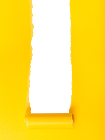 yellow paper: yellow rolled-up torn paper on white isolated vertical background Stock Photo