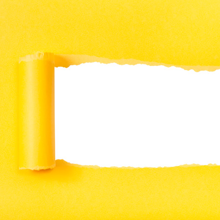 yellow paper: yellow rolled-up torn paper on white isolated square background