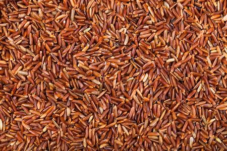 kernel: food background - uncooked long grain Red Kernel rice