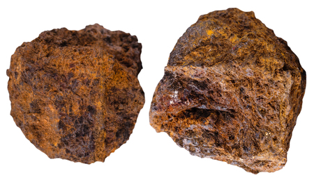 gemmology: macro shooting of specimen natural rock - two pieces brown limonite (bog iron ore) mineral stone isolated on white background