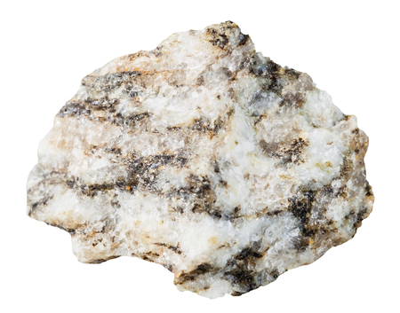 specimen: macro shooting of specimen natural rock - specimen of Gneiss mineral stone isolated on white background