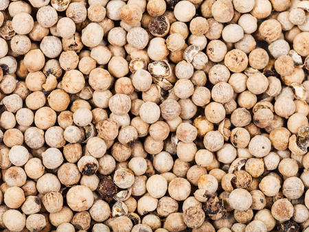 white pepper: food background - many dried white pepper peppercorns Stock Photo