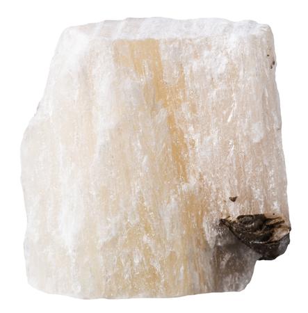 specimen: macro shooting of specimen natural rock - gypsum (alabaster) mineral stone isolated on white background