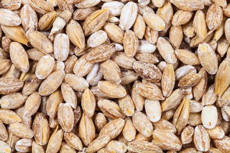 close up food: food background - raw pearl barley close up