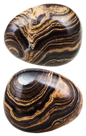 tumbled: macro shooting of natural mineral stone - two tumbled Stromatolite (stromatolith) gemstones isolated on white background