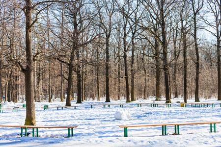 recreation area: recreation area in oak tree grove of urban park in sunny winter day
