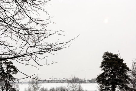 snowcovered: gray overcast sky over snow-covered country fields in winter