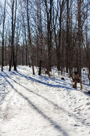 frost bound: slippy footpath in urban park in sunny winter day